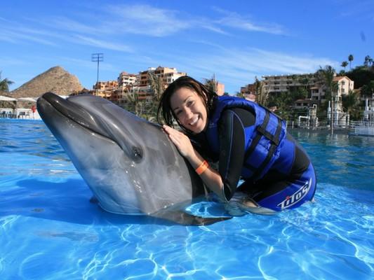 Nado_delfines2
